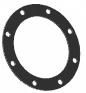 """Прокладка круглая 4"""" с 8-ю отверстиями из витона Tecnometal 10.01.87/V"""